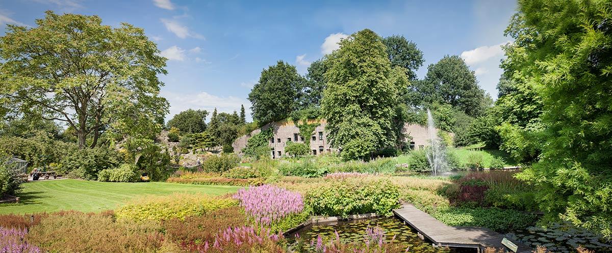 Tuinen Utrecht Fotocursus Hoofddorp Botanische Tuinen Utrecht ...